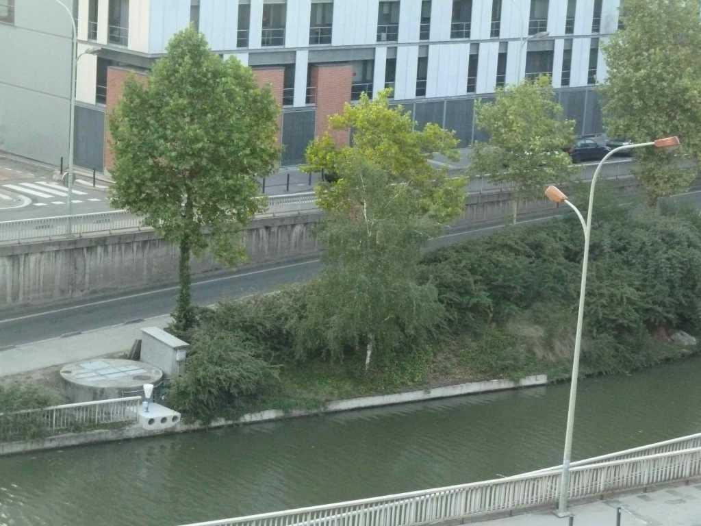 T2 Autre 45 m2 Toulouse rue du pont Guilhemery Hyper centre Métro B François Verdier (122) - P1050765.jpg